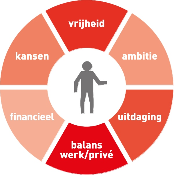 visual ipcon drijfveren ondernemer web